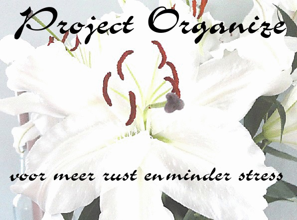 project organize