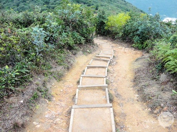 Hike Trails in Hong Kong!